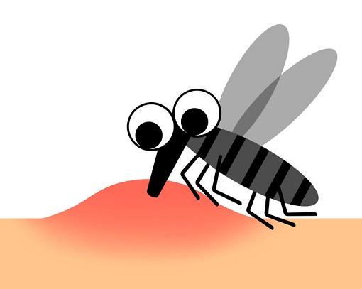 蚊に刺されるとなぜ痒くなるの?刺されやすい人とは?